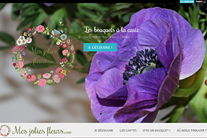 Mes Jolies Fleurs, sites web depannage PC ordinateur formation informatique toulon mourillon